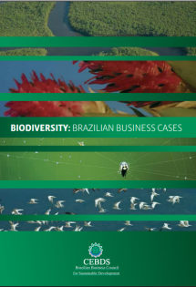 Biodiversity: Brazilian Business Cases