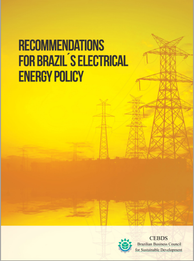 Recommendations for Brazil´s Electrical Energy Policy