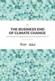 The Business End of Climate Change-01 (002)