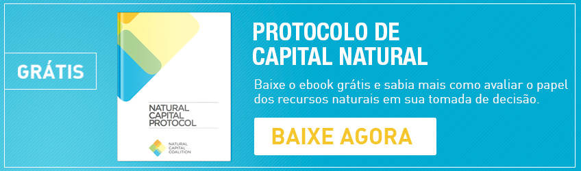 E-Book Capital Natural